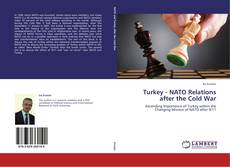 Bookcover of Turkey - NATO Relations after the Cold War