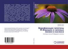 Buchcover von Верификация гипотезы М.Фарадея о силовых линиях в космосе