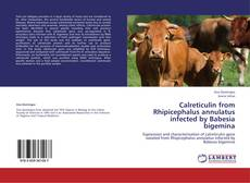 Couverture de Calreticulin from Rhipicephalus annulatus infected by Babesia bigemina