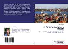 Capa do livro de Is Turkey a Bridge or a Threat?