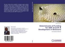 Bookcover of Determinants of Funding for SME Growth & Development in Botswana