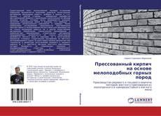 Bookcover of Прессованный кирпич на основе мелоподобных горных пород