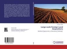Large-scale Foreign Land Acquisitions kitap kapağı