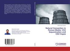 Portada del libro de Natural Convection in Porous Media: CO2 Sequestration and  CO2-Vapex