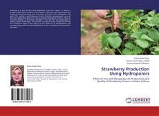 Обложка Strawberry Production Using Hydroponics