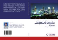 Couverture de Employment Generation Through NREGS In Chittoor District