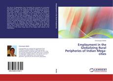 Buchcover von Employment in the Globalizing Rural Peripheries of Indian Mega-cities