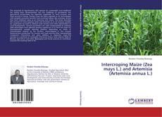Portada del libro de Intercroping Maize (Zea mays L.) and Artemisia (Artemisia annua L.)