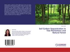 Buchcover von Soil Carbon Sequestration in Tree Plantations and Natural Forest