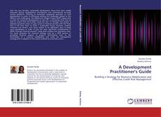 Bookcover of A Development Practitioner's Guide