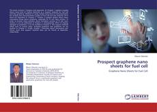 Bookcover of Prospect graphene nano sheets for fuel cell