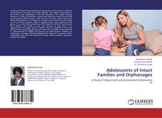 Обложка Adolescents of Intact Families and Orphanages