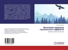 Bookcover of Волновая природа туннельного эффекта