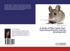 Bookcover of A Study of Mice Teeth Over-Expressing Amelotin During Amelogenesis