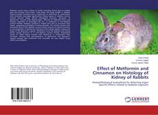 Copertina di Effect of Metformin and Cinnamon on Histology of Kidney of Rabbits