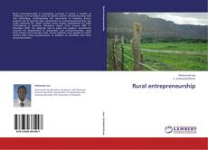 Bookcover of Rural entrepreneurship