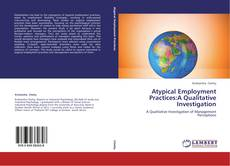 Bookcover of Atypical Employment Practices:A Qualitative Investigation
