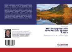 Bookcover of Метаморфические комплексы Горного Алтая