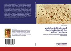 Bookcover of Modeling & biophysical characterisation of the primary gushing