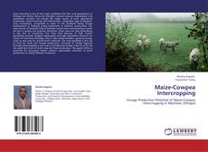 Bookcover of Maize-Cowpea Intercropping