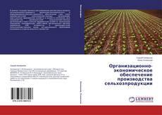 Обложка Организационно-экономическое обеспечение производства сельхозпродукции
