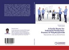 Bookcover of A Facile Route for Industrial Production Process of PolyAcrylamide