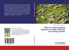 Bookcover of Effect of intercropping legumes on yield, biomass and sheep growth