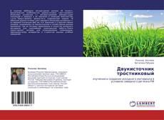 Bookcover of Двукисточник тростниковый