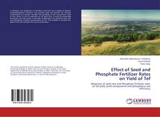 Bookcover of Effect of Seed and Phosphate Fertilizer Rates on Yield of Tef