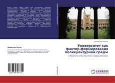 Copertina di Университет как фактор формирования поликультурной среды