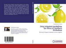 Bookcover of Drip irrigation guidelines for citrus in northern Zimbabwe