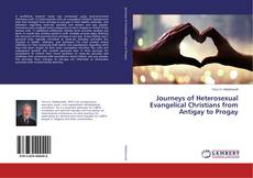 Bookcover of Journeys of Heterosexual Evangelical Christians from Antigay to Progay