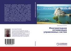 Buchcover von Многометодная оптимизация управляемых систем