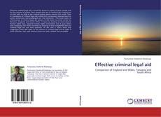 Portada del libro de Effective criminal legal aid
