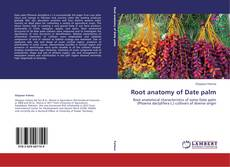 Bookcover of Root anatomy of Date palm