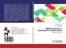 Buchcover von Эффективность брендинга территории