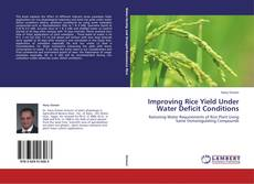 Bookcover of Improving Rice Yield Under Water Deficit Conditions