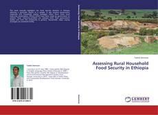 Assessing Rural Household Food Security in Ethiopia kitap kapağı