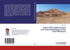 Bookcover of Morni Hills: Deformation and Geomorphology of the Sub-Himalayas