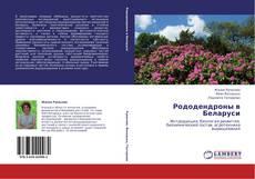 Рододендроны в Беларуси的封面