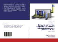 Copertina di Осушка и очистка природного газа на обменных формах цеолитов А и Х