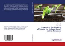 Capa do livro de Improving the leaching efficiency for reclamation of saline clay aggre