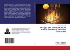 Analysis of Capital Structure & Effectiveness of Business Enterprises kitap kapağı