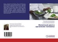 Bookcover of Фолатный цикл в организме человека