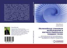 Bookcover of Нелинейные спиновые возбуждения в магнито-хиральных твердых телах