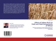 Bookcover of Effect of Yellow Rust on Yield and Yield Components of Wheat