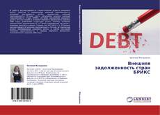 Bookcover of Внешняя задолженность стран БРИКС