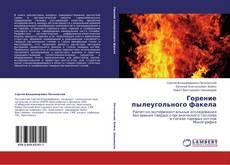 Горение пылеугольного факела kitap kapağı