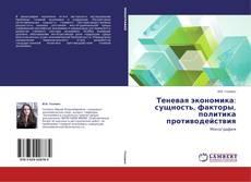 Buchcover von Теневая экономика: сущность, факторы, политика противодействия
