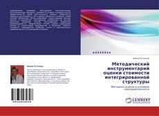 Copertina di Методический инструментарий оценки стоимости интегрированной структуры